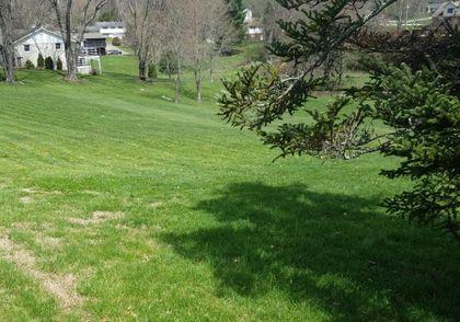 Property photo 117 Hillandale Drive